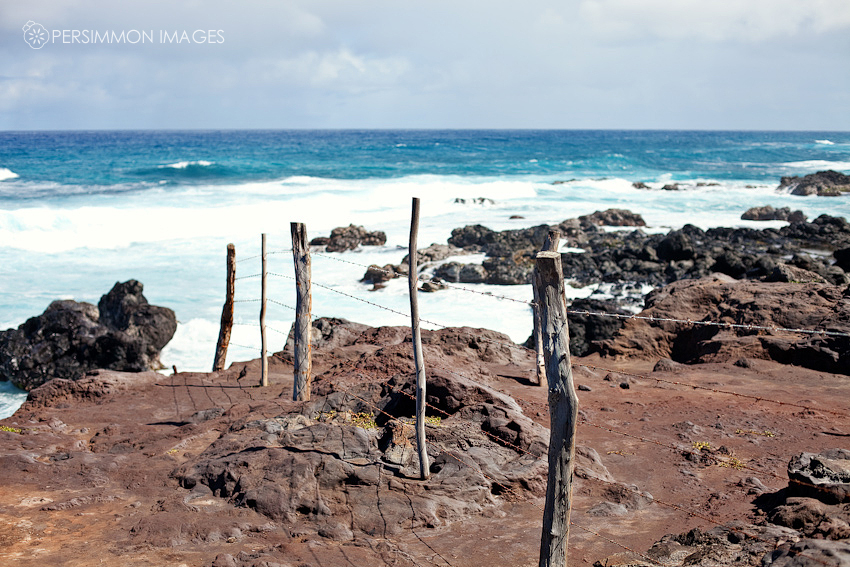 A barbed wire fence runs from the land into the see on Maui