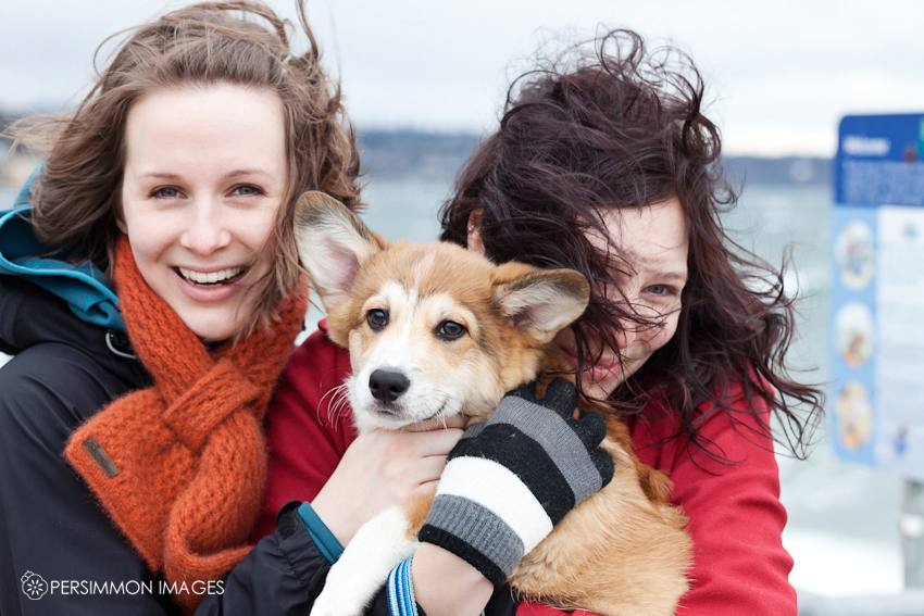 Seattle pet photographer and family with corgi puppy at Alki beach