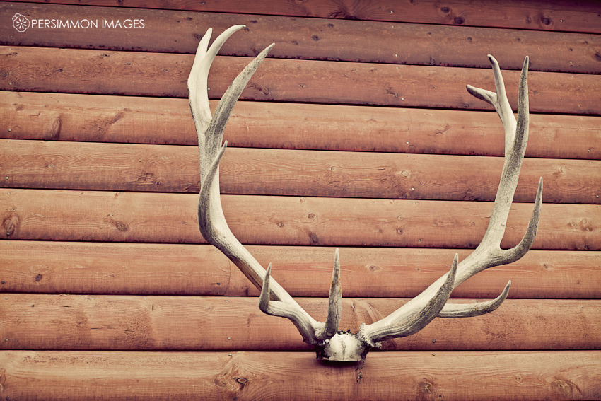 Rustic elk antler wedding details at Glacier Outdoor Company in Montana