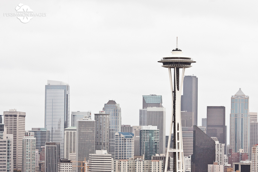 Kerry Park Seattle city skyline photography with Space Needle on grey day
