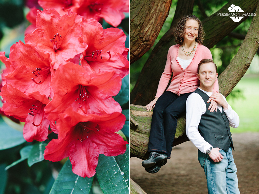Volunteer Park engagement portraits with rhododendrons and pine trees. Modern engagement portraits by Seattle wedding photographers Persimmon Images