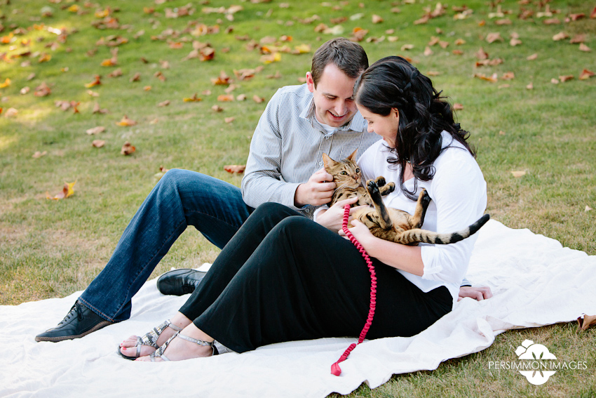 Bellevue downtown park engagement photography with Savannah Cat