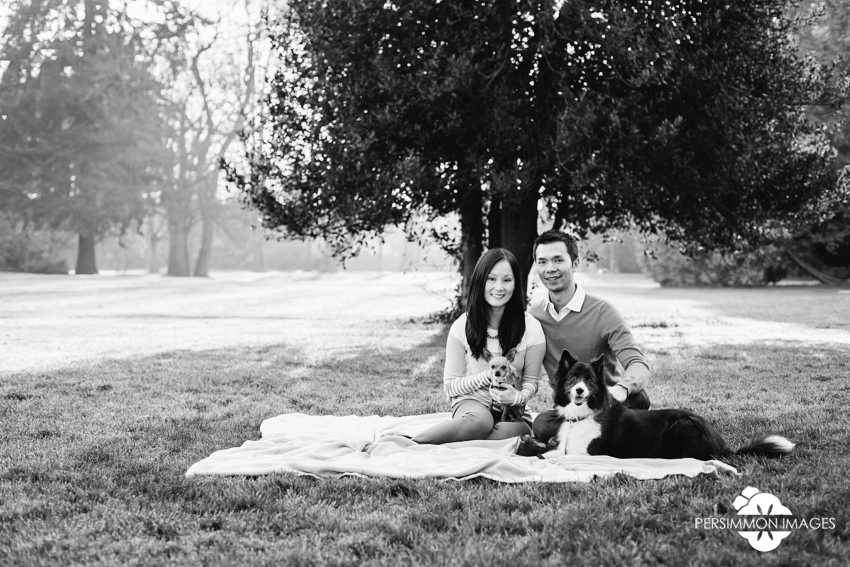 Volunteer Park engagement photography with picnic blanket and dogs on grassy knoll